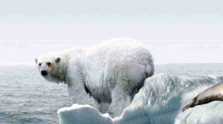 Insight into China's expanding role in Arctic affairs